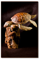 Green_Sea_Turtle -  SOLD
